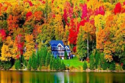 4-Days USA east Coast Foliage Golden Tour